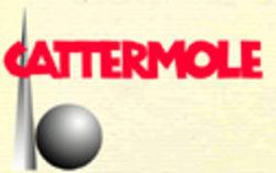 logo: Cattermole 20th Century Children's Books