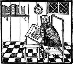 logo: Owl & Company Bookshop (Calvello Books)