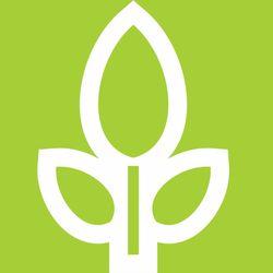 logo: Vuthisa Technologies