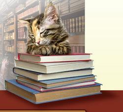 logo: Cat's Cradle Books