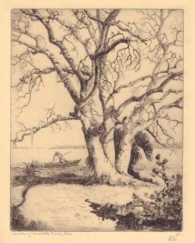 Image for Hickory Tree (Amelote River, Florida) , 1936