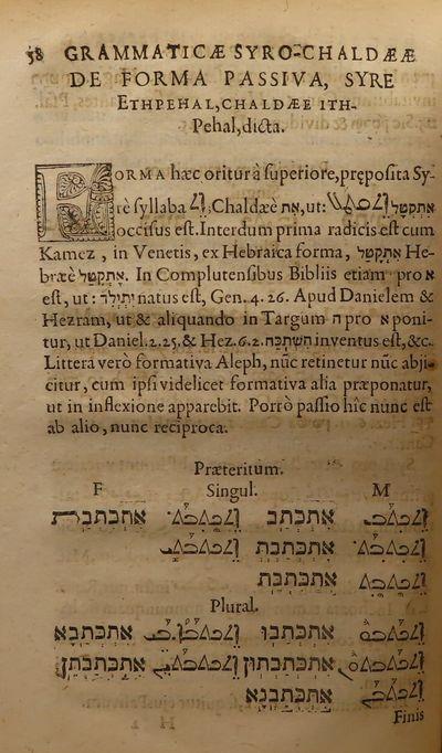 Image for Grammaticae Syro-Chaldaeae Libri Duo, Quorum Primus Voces Simplices,  Secundus Vero Conjunctas Considerat
