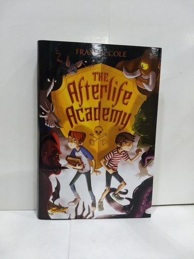 Image for The Afterlife Academy