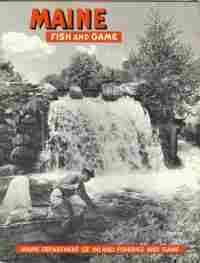 Maine fish and game spring 1961 vol iii no 1 for Maine fish and game