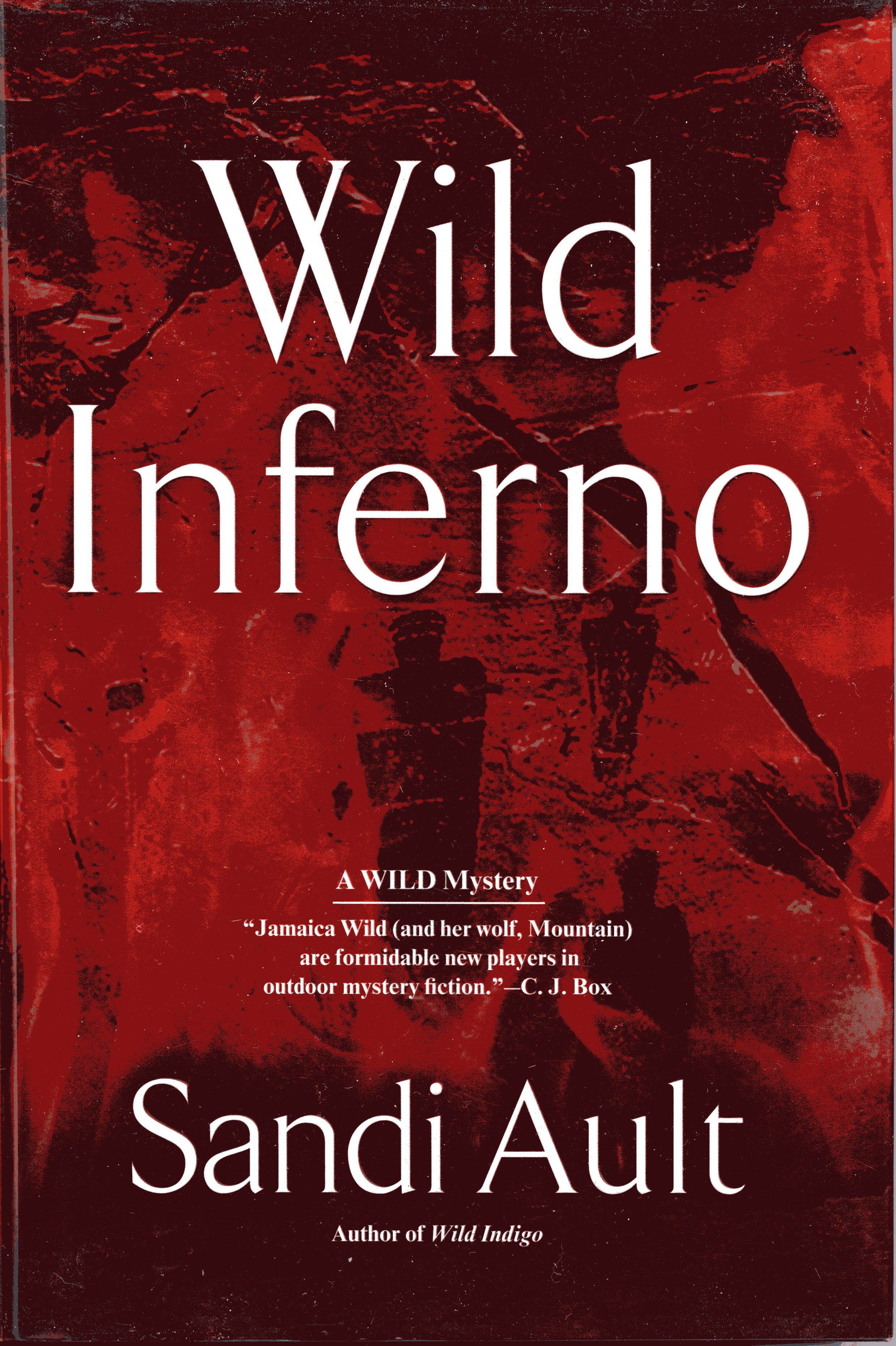 Image for Wild Inferno