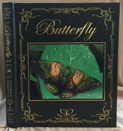 Butterfly, Marent, Ben Thomas