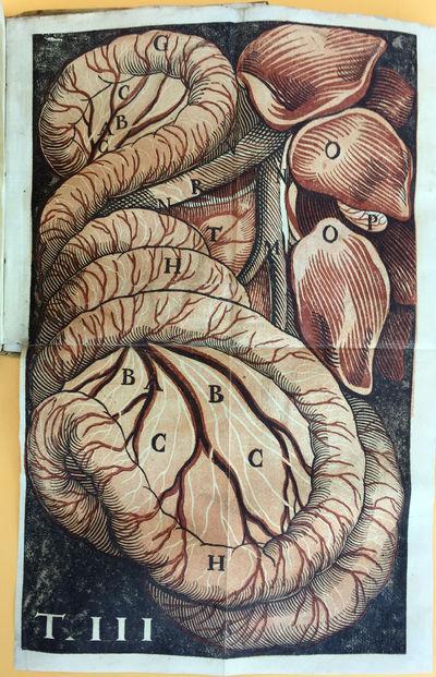 Image for De lactibus sive lacteis venis quarto vasorum mesaraicorum genere novo invento... dissertatio.