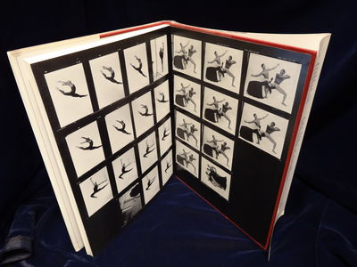 Image for Alvin Ailey American Dance Theater: Jack Mitchell Photograms  A Donna  Martin Book