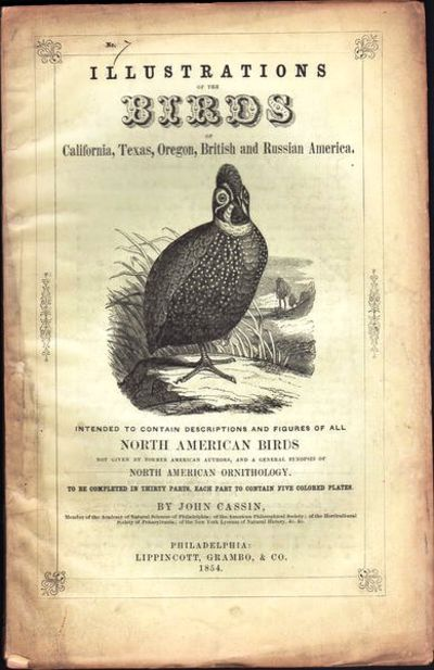 Image for Illustrations of the Birds of California, Texas, Oregon, British and  Russian America.  Fascicule 7 comprising text pages 191-212 & plates 31-35  as issued in original wraps.