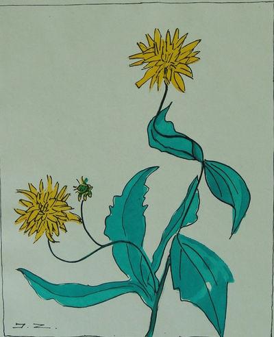 Image for Clos Joli Etudes de Fleurs et Fruits