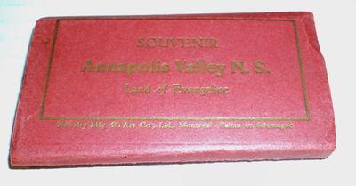 SOUVENIR ANNAPOLIS VALLEY N.S. [NOVA SCOTIA]