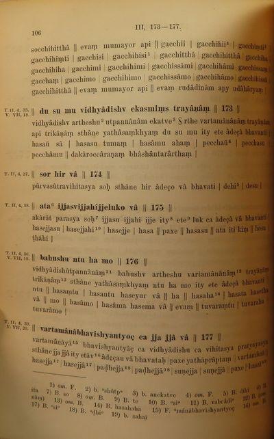Image for Hemacandra's Grammatik der Prakritsprachen. Siddhahemacandram Adhyaya  VIII. Mit Kriischen und Erlauternden Anmerkungen. I. Theil. Text und  wortverzeichniss. WITH II. Theil. Ubersetzung und erlauterungen.