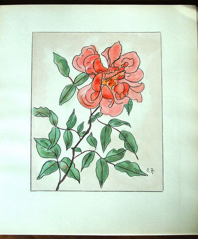 Image for Les Roses Aquarelles et Dessins