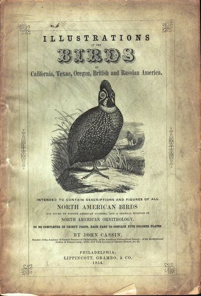 Image for Illustrations of the Birds of California, Texas, Oregon, British and  Russian America.  Fascicule 6. Comprising text pages 159-190  & plates 26-30  as issued in original wraps.