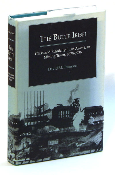 Image for The Butte Irish: Class and Ethnicity in an American Mining Town, 1875-1925