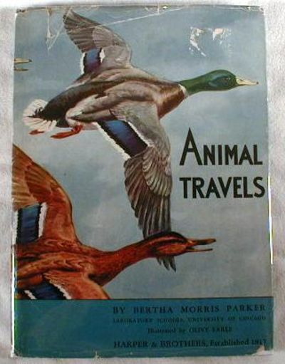 Animal Travels, Bertha Morris Parker and Thomas Park.  Illustrated By Olive Earle