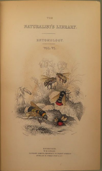 Image for The Natural History of Bees. Comprehending the Uses and Economical Management of the British and Foriegn Honey-Bee; Together with the Known Wild Species, Illustrated with Thirty-six plates [sic] coloured from nature, with portrait and memoir of Huber