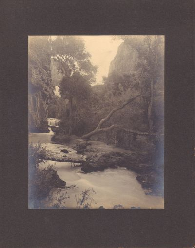 Image for Grand Canyon, Ariz., View in Cataract Canyon
