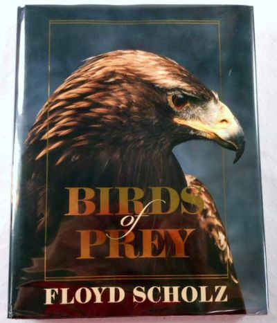 Birds of Prey, Floyd Scholz. Photographs By Tad Merrick