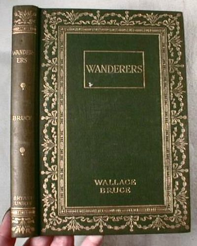 Image for Wanderers
