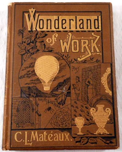 Image for The Wonderland of Work