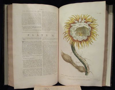 Image for Figures of the most Beautiful, Useful, and Uncommon Plants described in  The Gardener's Dictionary, exhibited on three hundred copper plates,  accurately engraven after drawings taken from Nature.  With the characters  of their flowers and seed-vessels, Drawn when they were in their greatest  Perfection. To which are added, Their descriptions, and an Account of the  Classes to which they belong, according to Ray's, Tournefort's, and  Linnaeus's Method